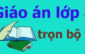 Giáo án lớp 8 trọn bộ (Toán, Ngữ văn, tiếng Anh) - Trung tâm gia sư Hà Nội