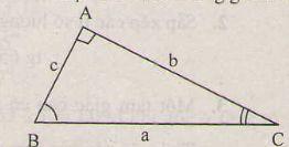 Một số hệ thức về cạnh và góc trong tam giác vuông-1