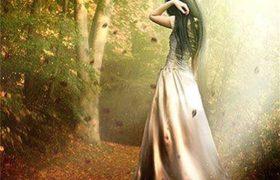 Mùa thu, mùa lá rụng, mùa chông chênh trên những cung đường